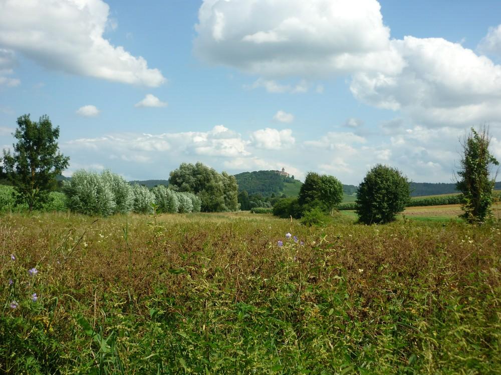 14_Oberstenfeld_Heuerbachaue_web